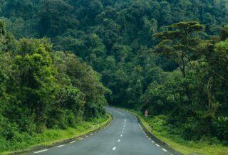 Une route bitumée du Nyungwe park au Rwanda